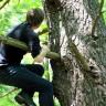 Me too im Baum